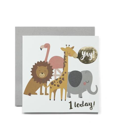 1st Birthday Blank Greetings Card