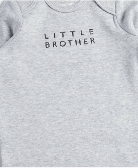 Little Brother All-in-one